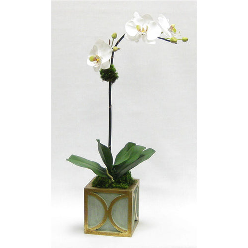 Wooden Mini Square Container w/ Half Circle Green & Antique Gold - White & Green Two Spike Orchid Artificial
