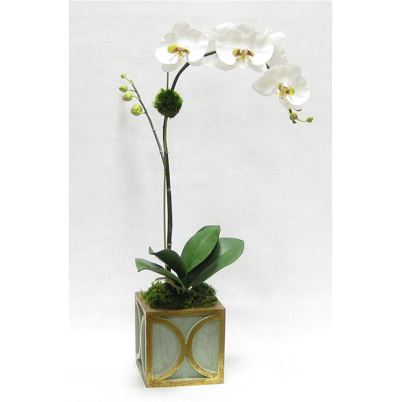 Wooden Mini Square Container w/ Half Circle Green & Antique Gold - White & Green Orchid Artificial