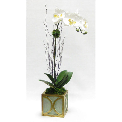 Wooden Mini Square Container w/ Half Circle Green & Antique Gold - White & Yellow Orchid Artificial