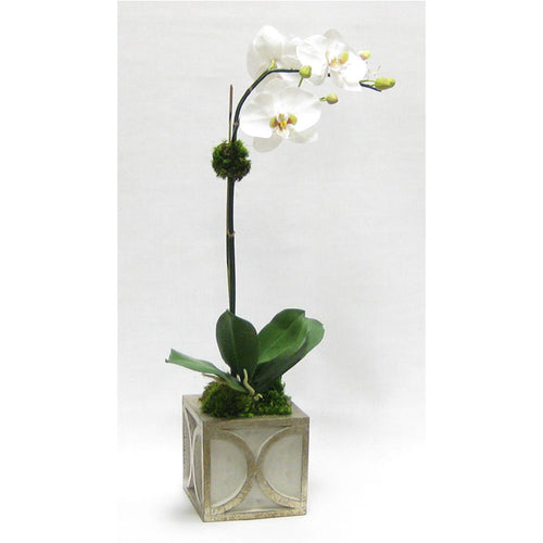 Wooden Mini Square Container w/ Half Circle Grey & Antique Silver - White & Green Two Spike Orchid Artificial