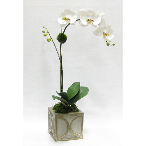 Wooden Mini Square Container w/ Half Circle Grey & Antique Silver - White & Green Orchid Artificial