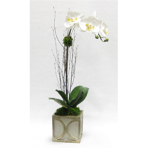 Wooden Mini Square Container w/ Half Circle Grey & Antique Silver - White & Yellow Orchid Artificial