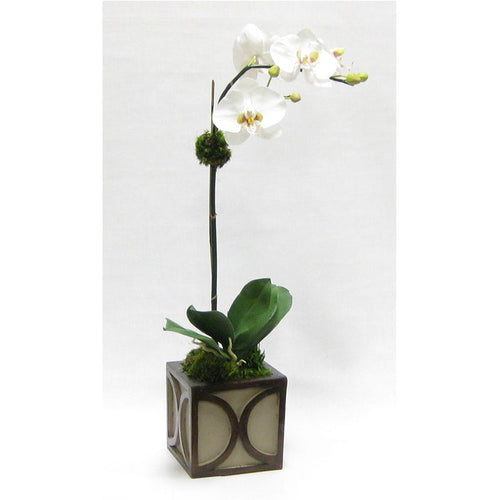 Wooden Mini Square Container w/ Half Circle - Patina Distressed w/ Antique Bronze - White & Green Two Spike Orchid Artificial