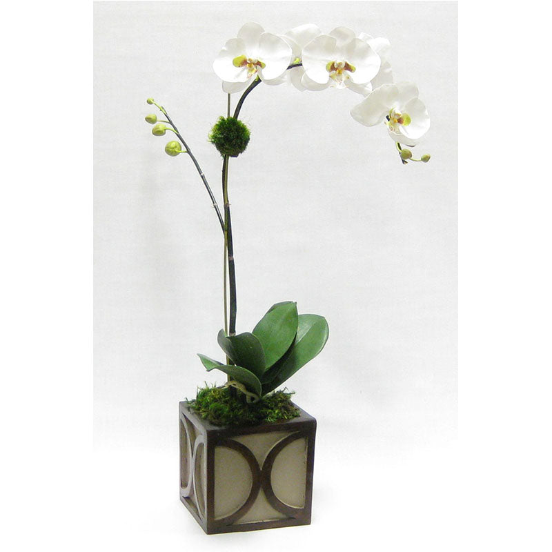 Wooden Mini Square Container w/ Half Circle - Patina Distressed w/ Antique Bronze - White & Green Orchid Artificial