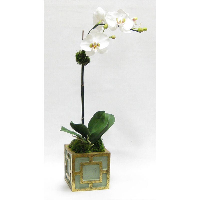 Wooden Mini Square Container w/ Square Green & Antique Gold - White & Green Two Spike Orchid Artificial