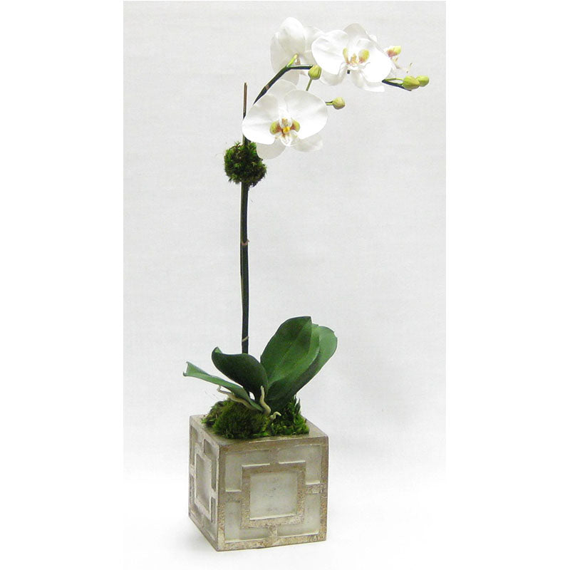 Wooden Mini Square Container w/ Square  Grey & Antique Silver - White & Green Two Spike Orchid Artificial