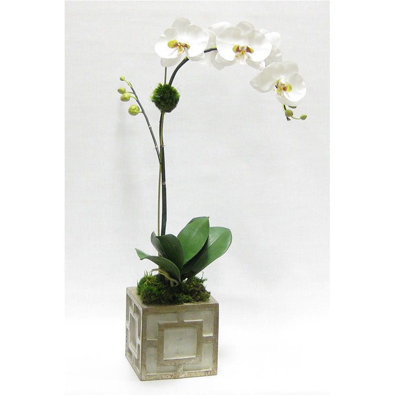 Wooden Mini Square Container w/ Square  Grey & Antique Silver - White & Green Orchid Artificial