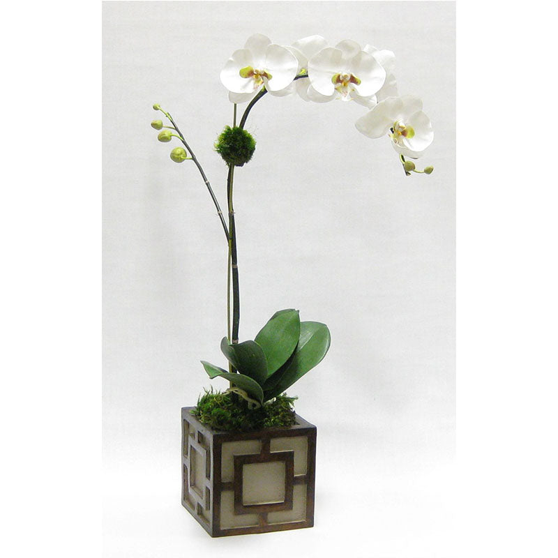 Wooden Mini Square Container w/ Square - Patina Distressed w/ Antique Bronze - White & Green Orchid Artificial