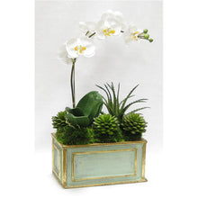 Load image into Gallery viewer, [WRP-GG-ORYESUB] Wooden Rect Container Gray/Green  - White & Yellow Orchid w/Succulents