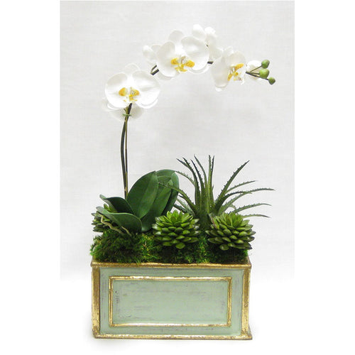 Wooden Rect Container Gray/Green  - White & Yellow Orchid w/Succulents