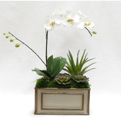 Wooden Rect Container Patina Distressed w/Bronze - White & Green Orchid w/Succulents