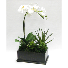 Load image into Gallery viewer, [WRPE-BA-ORYESUG] Wooden Rect Container Black Antique - Orchid White & Yellow w/Succulents Artificial