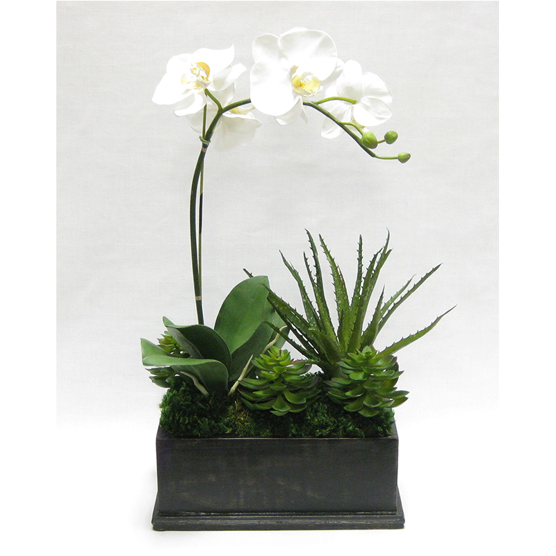 Wooden Rect Container Black Antique - Orchid White & Yellow w/Succulents Artificial