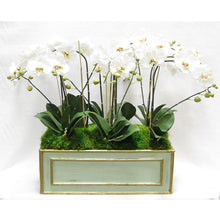 Load image into Gallery viewer, Wooden Large Rect Container Grey Green  - White & Green Orchid Artificial