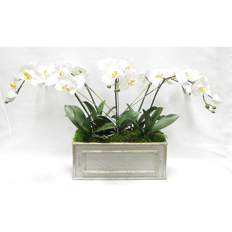 Wooden Medium Rect Container Grey Silver - White & Yellow Orchid Artificial