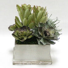 Load image into Gallery viewer, Wooden Square Container - Antique Gray w/ Silver - Succulents Sage Artificial