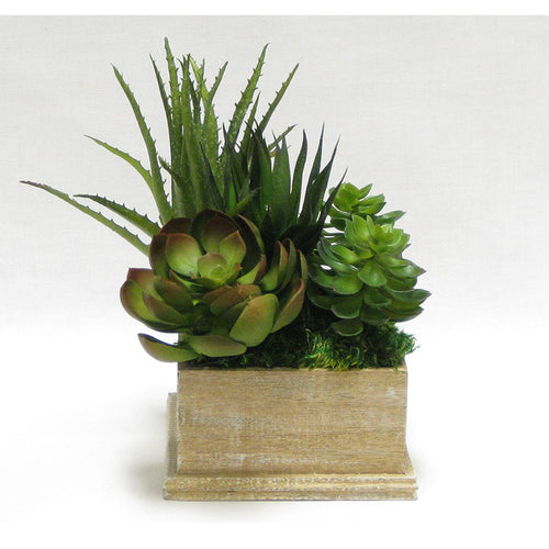 Wooden Square Container Weathered Antique - Succulents Green & Burgundy Artificial