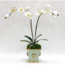 Load image into Gallery viewer, Wooden Square Container w/ Medallion Gray/Green - Double White & Yellow Orchid Artificial