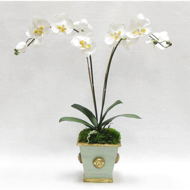 Wooden Square Container w/ Medallion Gray/Green - Double White & Yellow Orchid Artificial