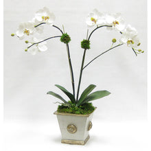 Load image into Gallery viewer, Wooden Square Container w/ Medallion Grey Silver - Double White & Green Orchid Artificial