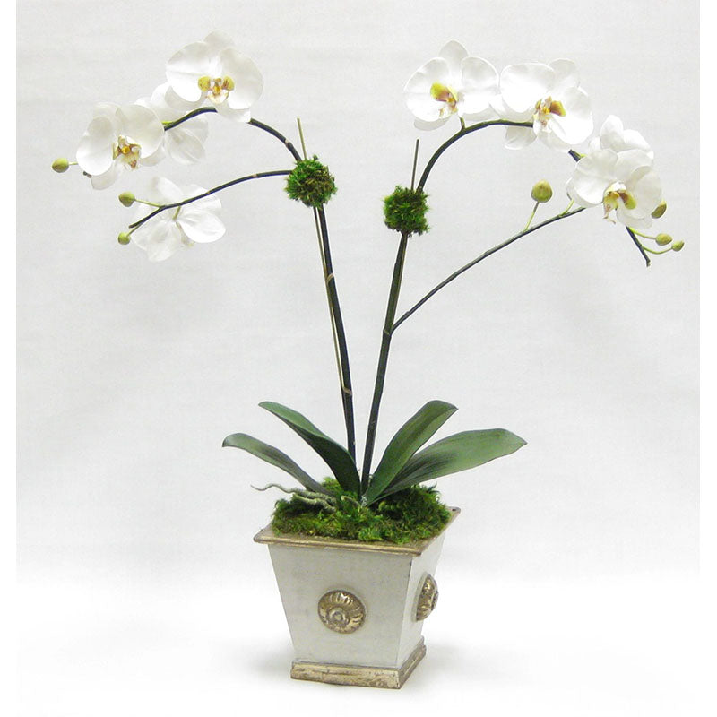 Wooden Square Container w/ Medallion Grey Silver - Double White & Green Orchid Artificial
