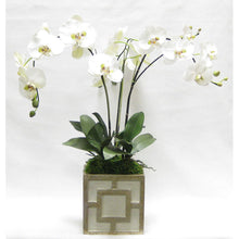 Load image into Gallery viewer, Wooden Square Container w/ Square - Green w/ Antique Gold - White & Green Orchid Artificial