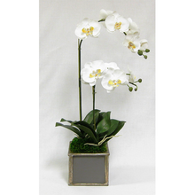 Load image into Gallery viewer, Wooden Square Container Dark Blue Gray Silver - Double Orchid White & Yellow