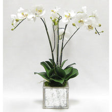 Load image into Gallery viewer, Wooden Square Planter Small - Silver Antique w/ Antique Mirror & Medallion - White & Green Orchid Artificial