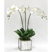 Load image into Gallery viewer, [WSPS-SAM-ORYE3] Wooden Square Planter Small - Silver Antique w/ Antique Mirror & Medallion - White & Yellow Orchid Artificial