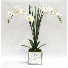 Load image into Gallery viewer, Wooden Square Mirrored Container Silver Antique - White & Yellow Double Orchid Artificial with Natural Palm
