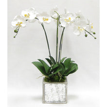 Load image into Gallery viewer, Wooden Square Planter Small - Silver Antique w/ Antique Mirror & Medallion - White & Yellow Orchid Artificial