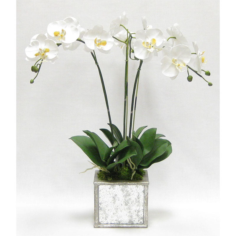 Wooden Square Planter Small - Silver Antique w/ Antique Mirror & Medallion - White & Yellow Orchid Artificial