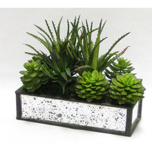 Load image into Gallery viewer, [WSRPS-BAM-SUGRN] Wooden Short Rect Black Small w/ Antique Mirror Container  - Succulents Green Artificial