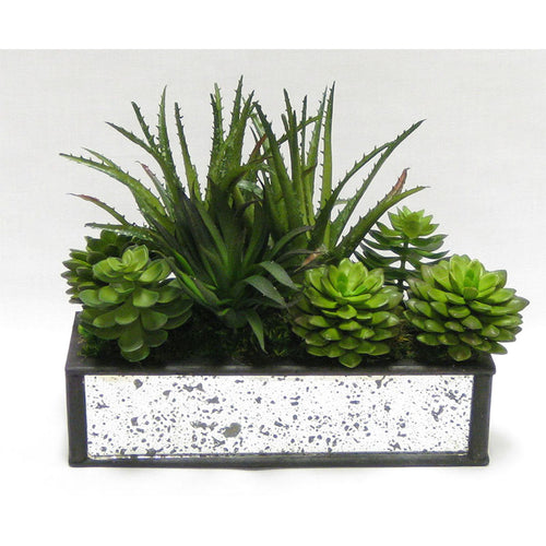Wooden Short Rect Black Small w/ Antique Mirror Container  - Succulents Green Artificial