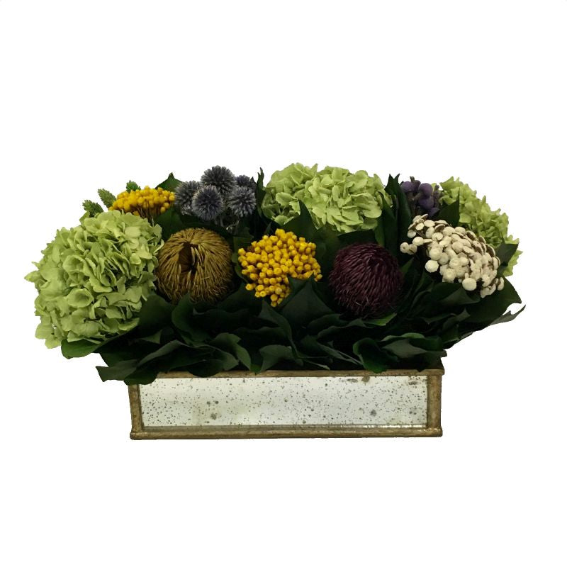 Wooden Short Rect Container Small Gold w/ Antique Mirror - Echinops w/Banksia, Brunia, Pharalis & Hydrangea Basil