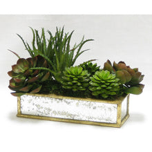 Load image into Gallery viewer, [WSRPS-GAM-SUBG] Wooden Short Rect.Container Small Gold Antique w/ Antique Mirror - Succulents Green & Burgundy Artificial