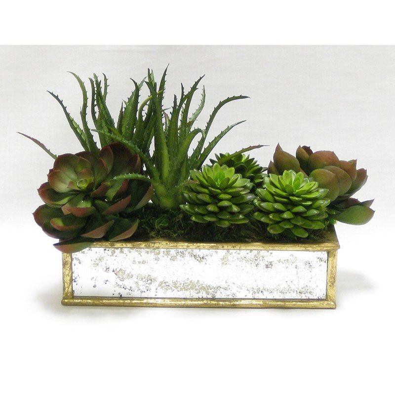 Wooden Short Rect.Container Small Gold Antique w/ Antique Mirror - Succulents Green & Burgundy Artificial