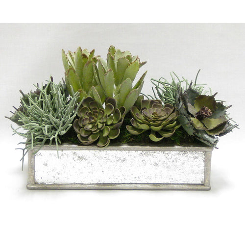 Wooden Short Rect Container Antique Silver w/ Antique Mirror - Succulents Sage Artificial