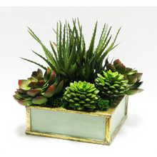 Load image into Gallery viewer, [WSSP-GG-SUGRN] Wooden Short Square Container Green w/ Gold Antique - Succulents Green Artificial