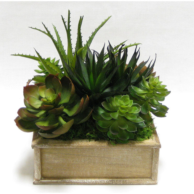 Wooden Short Square Container Weathered Natural - Succulents Green & Burgundy Artificial