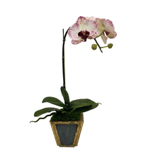 Load image into Gallery viewer, Wooden Small Container Dark Grey Blue & Gold - White & Purple Orchid Artificial