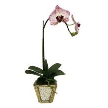 Load image into Gallery viewer, Wooden Small Container Gold w/ Antique Mirror- White & Purple Orchid Artificial