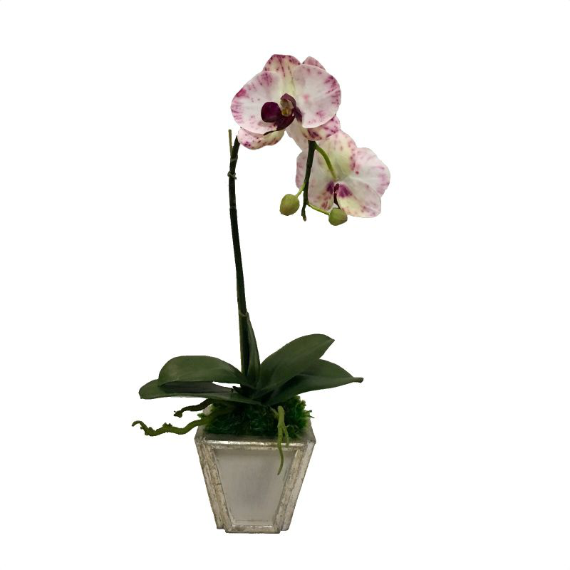 Wooden Small Container Grey & Silver - White & Purple Orchid Artificial