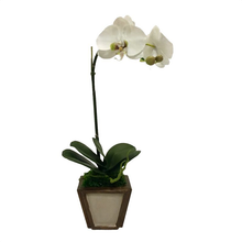 Load image into Gallery viewer, Wooden Small Container Patina Distressed & Bronze - White & Green Orchid Artificial