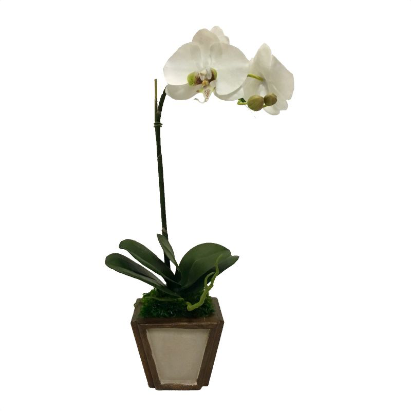 Wooden Small Container Patina Distressed & Bronze - White & Green Orchid Artificial
