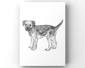 Border Terrier Giclee Print from a hand drawn illustration - Border terrier drawing - Border Terrier Print