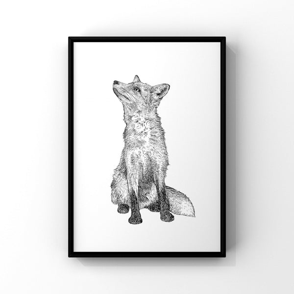 Fox Giclee Print from a hand drawn illustration - Fox drawing