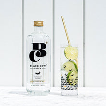 Load image into Gallery viewer, Black Cow Pure Milk Vodka 70cl