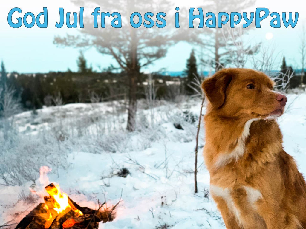 God jul og ønsker for det nye året!
