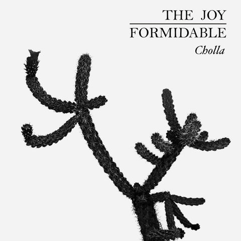 The Joy Formidable   Tempo (Strong Weak Weak) TRACK